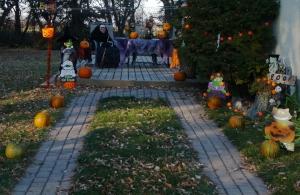 pumpkins-backdoor
